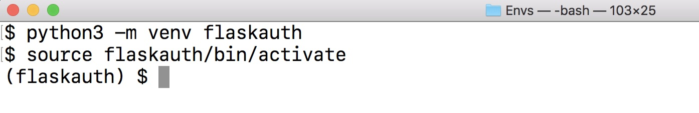 Создать и активировать виртуальную среду Python.