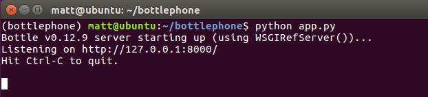 Успешный запуск сервера разработки Bottle из командной строки.