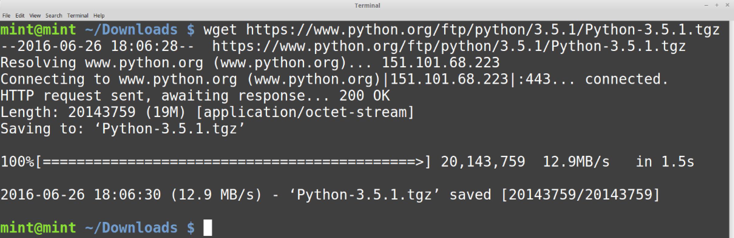 wget вывод исходного кода Python.