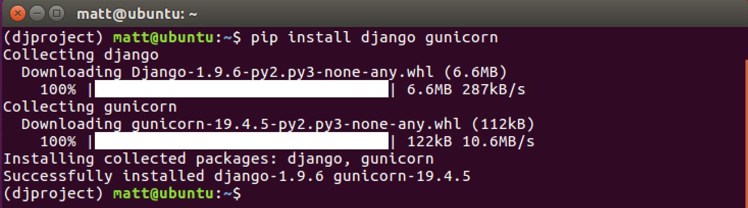 Django и Gunicorn правильно устанавливаются с помощью команды pip.
