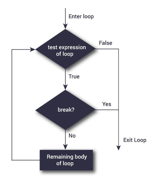 блок-схема разрыва python